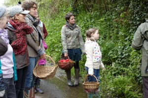 Foraging at Cwtch Camping Pembrokeshire